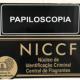 papiloscopistas-constataram-mais-de-400-nomes-falsos-em-atendimentos-da-central-de-flagrantes-220x188